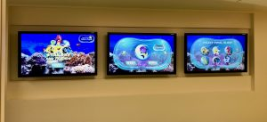 Interactive Aquarium Experience at Salah Foundation Children's Hospital