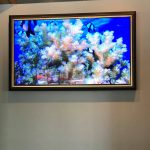 "55"" Display at Tarpon Bend from Intermedia Touch."